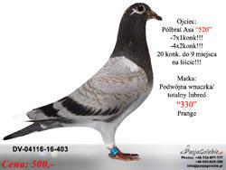 DV-04116-16-403 MINI
