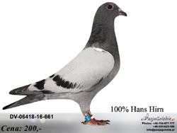 DV-06418-16-661 MINI