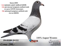 DV-09306-16-312 MINI