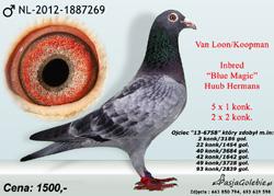 nl-2012-1887269-mini2