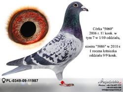 PL-0349-09-11987 MINI