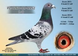 PL-0260-09-8952