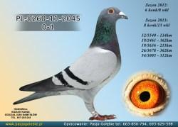 PL-0260-11-2045