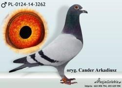RODOWOD-PL-0124-14-3262