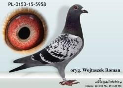RODOWOD-PL-0153-15-5958