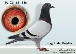 RODOWOD-PL-021-15-1886