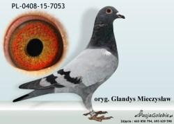 RODOWOD-PL-0408-15-7053