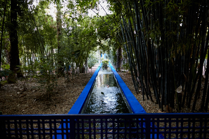Passagem Gastronômica - Roteiro de Marrakech - Jardin Majorelle