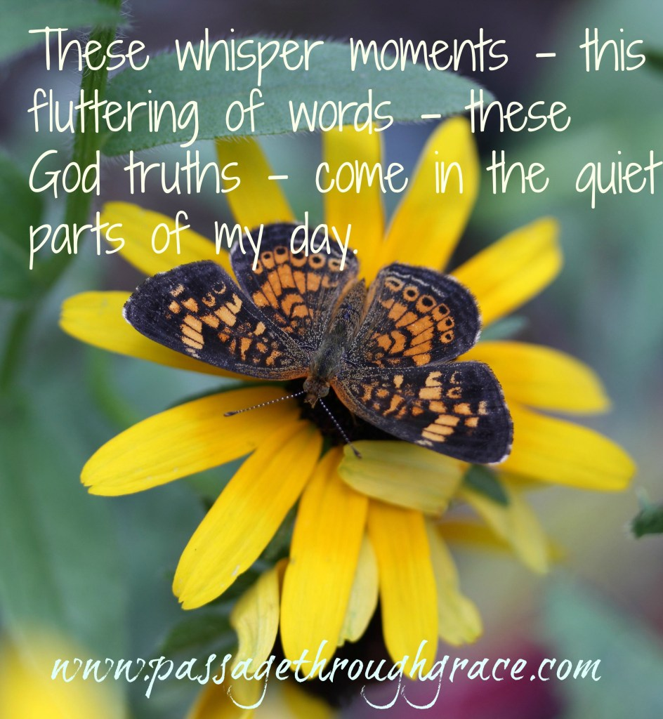 Butterfly-whisper