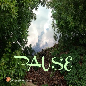 Sabbath Offerings ~ Pause