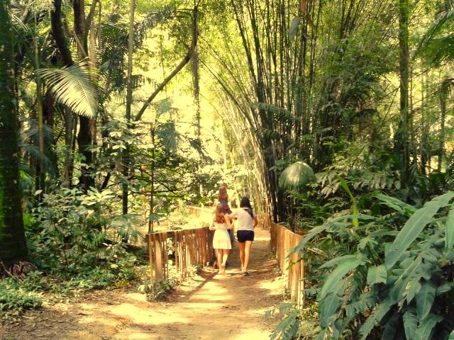As trilhas são fáceis de percorrer Foto: Patrícia Ribeiro/Passeios Baratos em SP