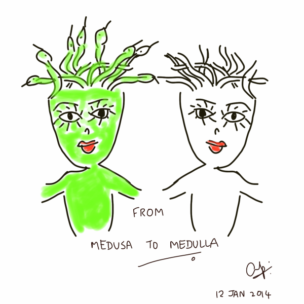 From Medusa to Medulla... with recharged hair!