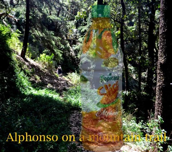 Alphonso on a mountain trail
