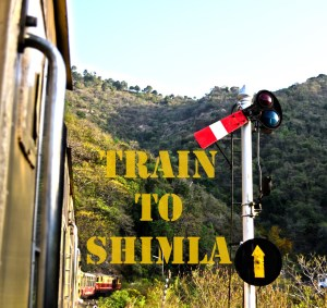 Train to Shimla to take us from 656 metres above sea level to 2076 metres above sea level...
