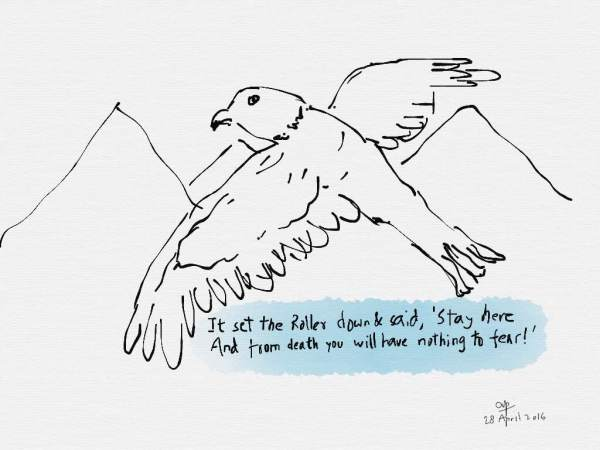 The story of a black-winged kite and an Indian Roller - a poem