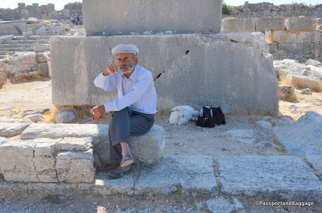 This friendly goat-herder is happy to tell everyone the story of Xanthos.  The only English I understood of his was British Museum, which I heard many, many times over.