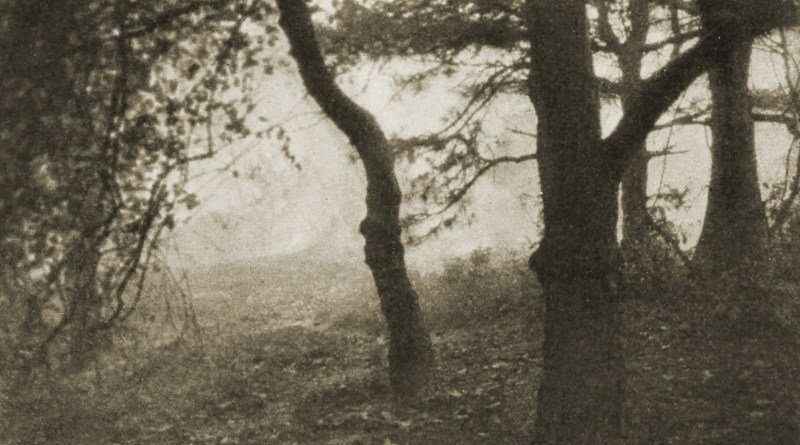 An October Morning by D. H. Brookins about 1908