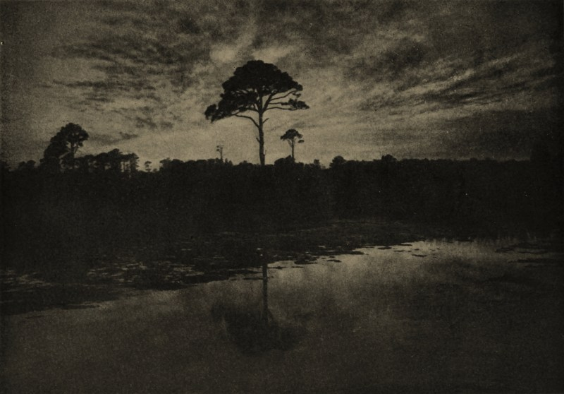 The Lone Sentinel by Maximilian Toch about 1908