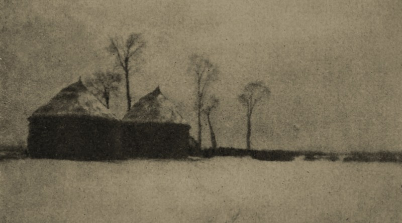 Trees and Ricks by H. E. Powell Higgins about 1908