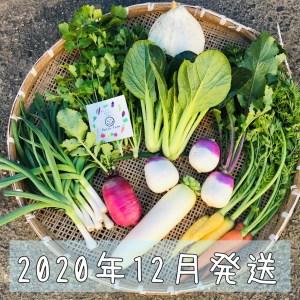 2020年12月旬彩野菜バスケット