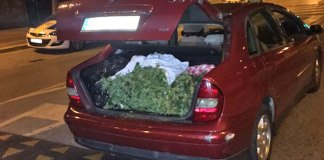 Imagen de la droga en el maletero del vehículo