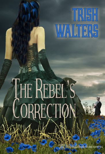 rebel's_correction_cover