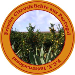 Fruchtetiket - für frischen Orangensaft