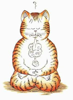 The importance of the cat in meditation