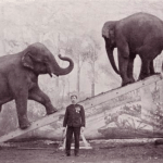 THE LEADERSHIP ELEPHANT: Why You Lead (Part 1)