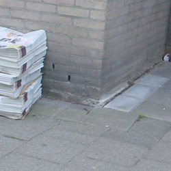 how do newspapers survive in the 21st century?