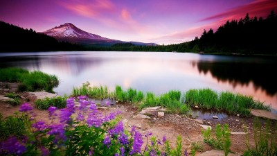 Nature Desktop Wallpapers Backgrounds (68+ background pictures)
