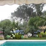 Aménagement paysager d'un bord de piscine