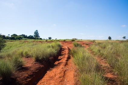 Voici la route qu'emprunte François pour se rendre dans ses champs. Les pluies diluviennes qu'il y a parfois dans la région abîme les routes et provoque une importante érosion des sols.