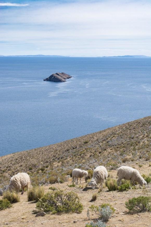 Ile du Soleil, lac Titicaca