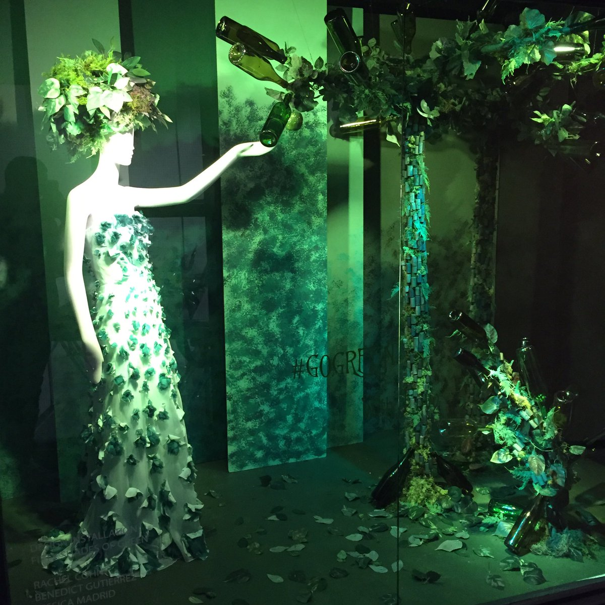 Admirable Green Nc Our Window Display 50 Shades On Obsessed On Obsessed Our Window Green Lawn Care 50 Shades houzz 01 50 Shades Of Green