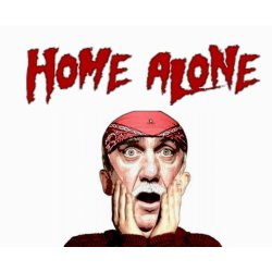 Small Crop Of Movies Like Home Alone