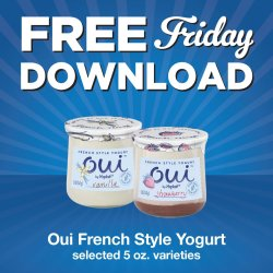 Small Crop Of What Is French Style Yogurt
