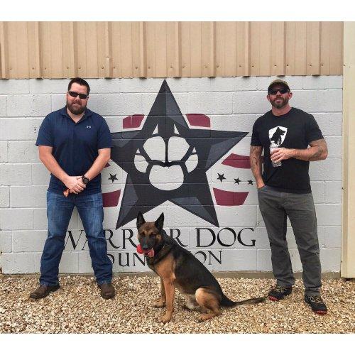 Medium Crop Of Warrior Dog Foundation