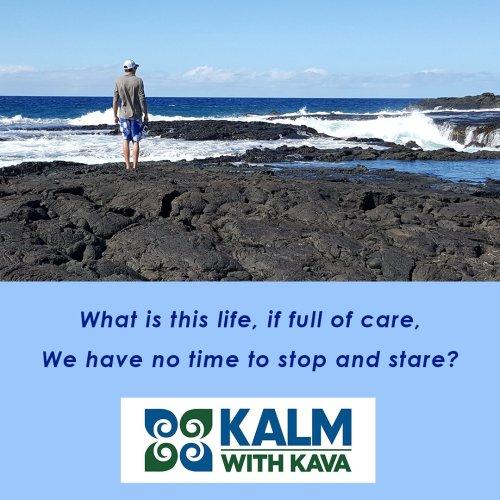 Medium Of Kalm With Kava