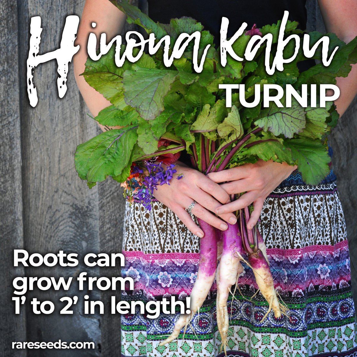 Special Reply Retweets Likes Baker Creek Seeds Twitter Baker Creek Seeds Free Shipping Bakers Creek Seeds Promo Code houzz-03 Bakers Creek Seeds