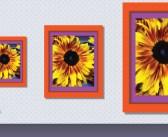 Cum editezi o imagine în PowerPoint?