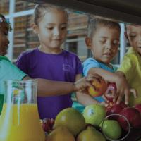 Nutrición de calidad: activo para el bienestar