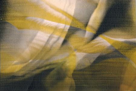 Vexing, 2009 Mixed Media: Digital & Liquid Emulsion © Jennifer Brendicke