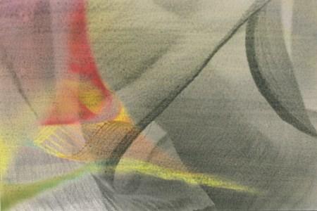 Delicate, 2009 Mixed Media: Digital & Liquid Emulsion © Jennifer Brendicke
