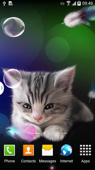 Sleepy Kitten Live Wallpaper скачать 1.0.2 на Android