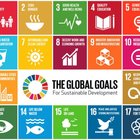 SDGs mini