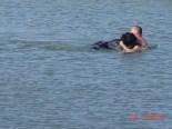 Black-Bear-rescue-04