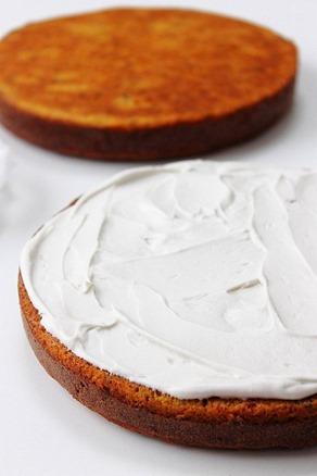 Paleo Carrot Cake (8)