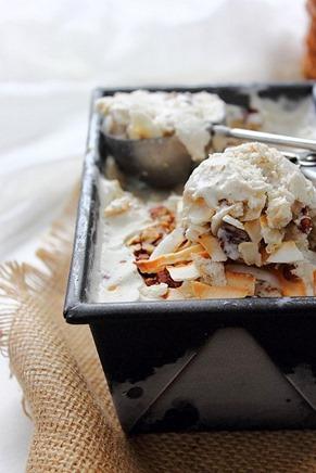 Smore Ice Cream Sandwiches (29)
