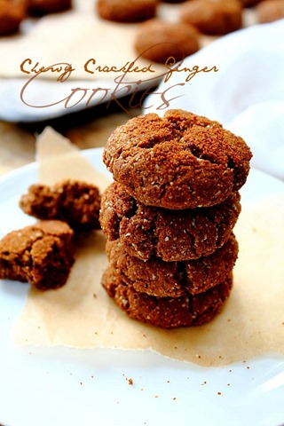 Paleo Chewy Crispy Coconut Cookies